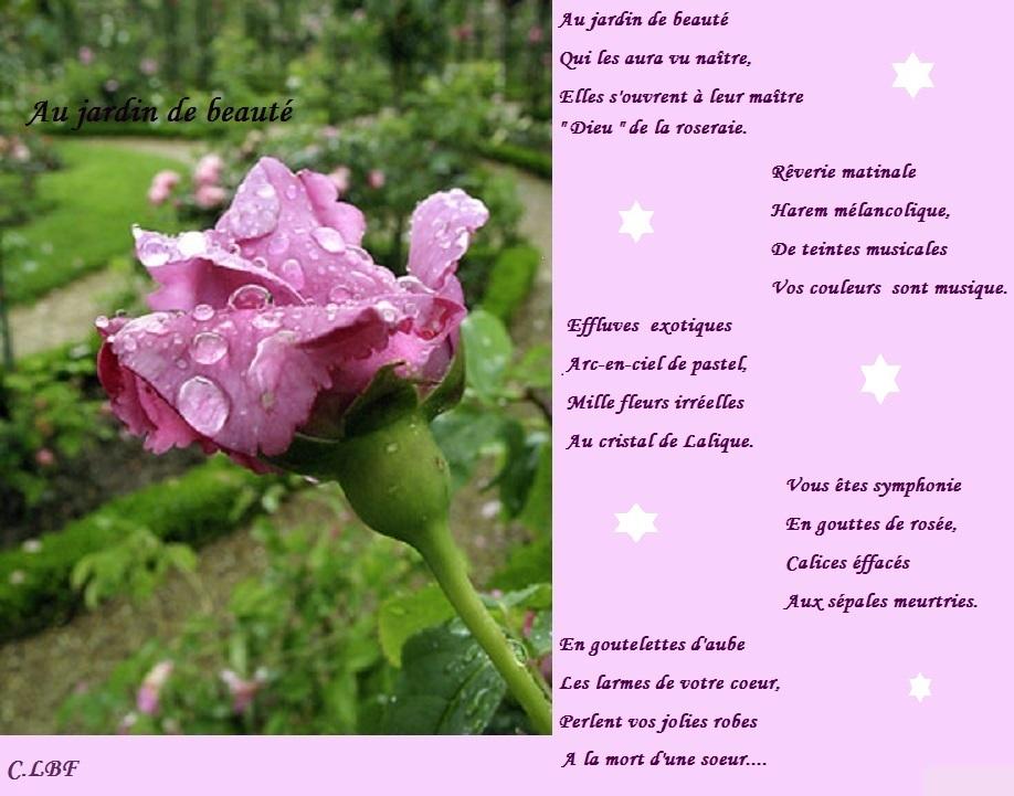 Au jardin de beauté Qui les aura vu naître, Œlles s'ouvrent à leur maître Dieu de la roseraie. Réverie matinale Harem mélancolique, De teintes musicales 'Vos couleurs sont musique. Vous êtes symphonie Œn gouttes de rosée, Calices éffacés Aux sépales meurtries. Œn goutelettes d'aube Q Les larmes de votre coeur, erlent vos jolies robes A la mort d'une soeur... C.LBF